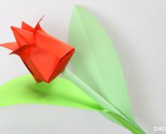 Tulipan de papel origami papiroflexia tulip paper flowers